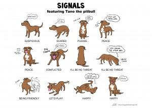 2c  Dog Signals-Lili Chin